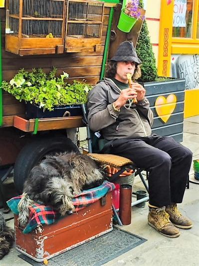dog and caravan .jpg